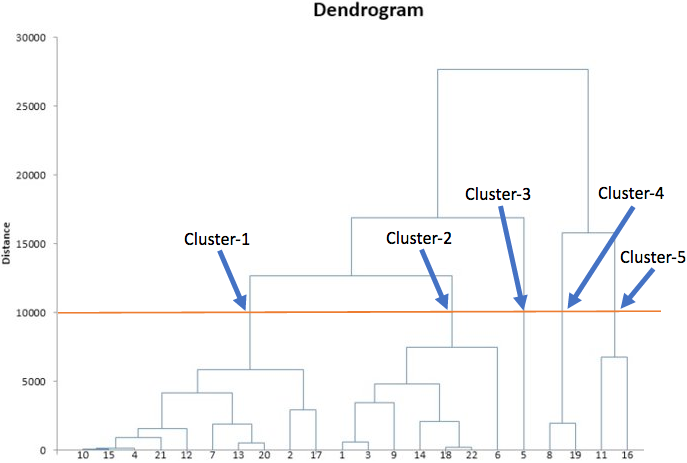 Where to cut the dendrogram?