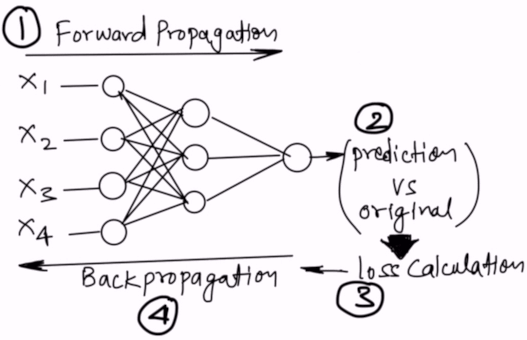 One full epoch cycle: Forward propagation and Backpropagation for all the rows in data